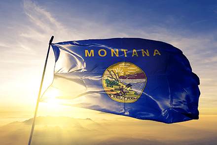 Montana state flag flying in the wind