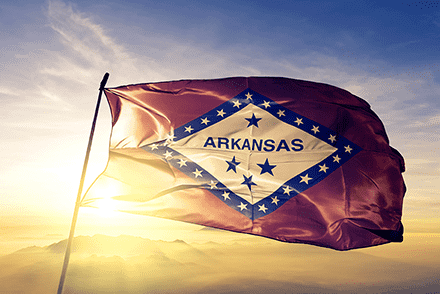 Arkansas state flag flying in the wind